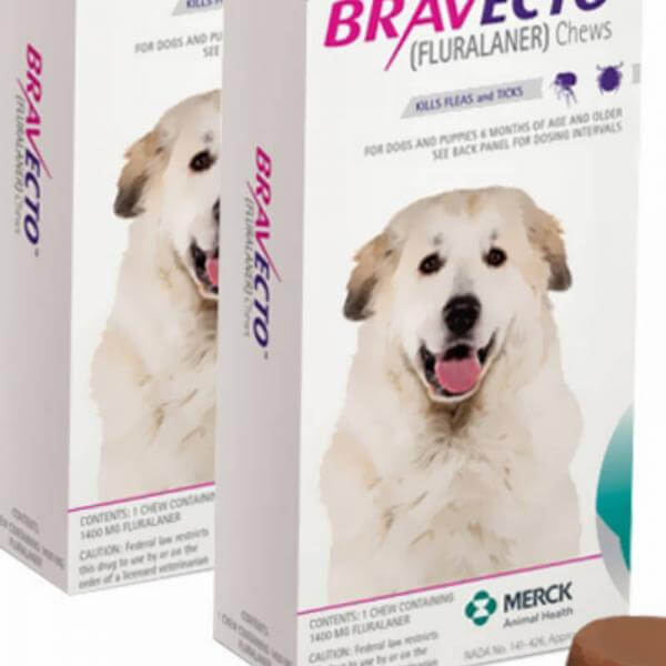 bravecto for dogs large 88-123LBS petking