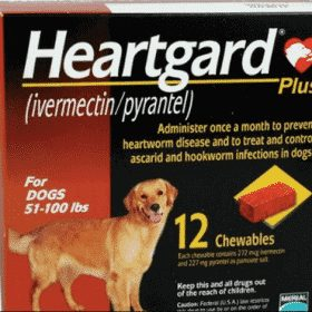 heartgard fordogs