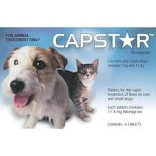 CAPSTAR for cat and dog