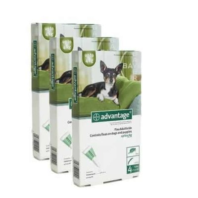 ADVANTAGE GREEN 12 PACK FOR SMALL DOGS UP TO 9 LBS