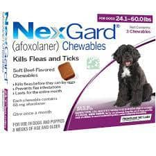 NEXGARD FOR DOGS 24.1-60 LBS - 3 PACK Dog Flea and Tick treatment
