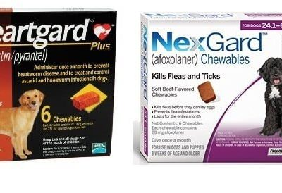 nexgard-combo-heartgard-brown-nexgard-purple