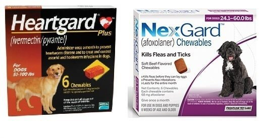 Nexgard Combo Heartgard Brown Purple
