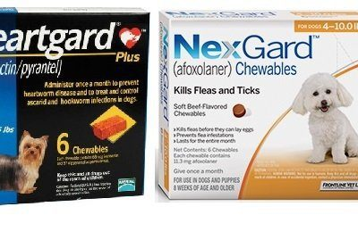 Heartgard_Plus_Blue_nexgard_orange