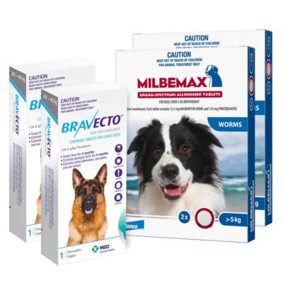 MILBEMAX bravecto for dogs