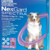 NexGard Spectra for large dogs 6 chews